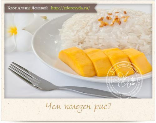 Разгрузочный день на рисе. Как проводить разгрузочный день на рисе правильно и безопасно?