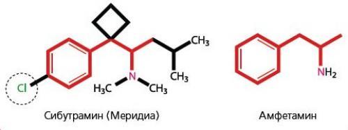 Сибутрамин в каких препаратах содержится для похудения. Описание и принцип действия сибутрамина