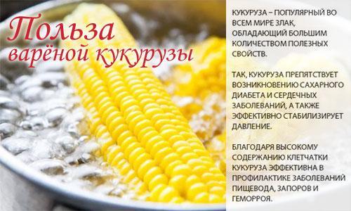 Кукуруза вареная бжу. Кукуруза варёная