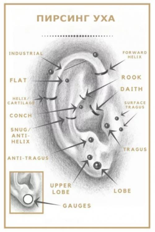 Гноится прокол в ухе. Почему болят уши от сережек?